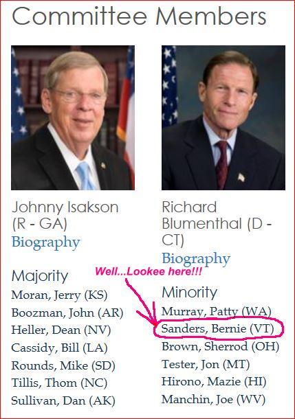2-5-2016-Senate Veterans Committee_B