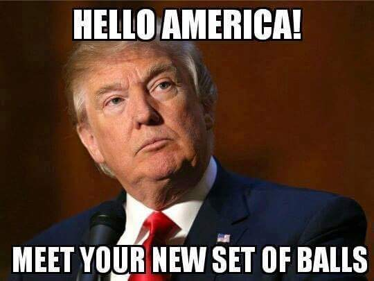 Trump-Your Next Set of Balls